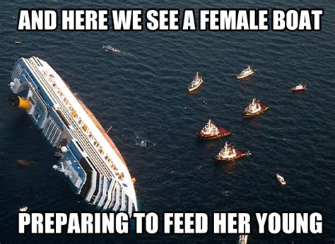Cruise Ship Meme - funny cruise ship jokes memes
