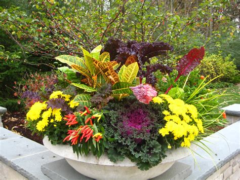 design flower planters fall season flower container ideas midwestern plants