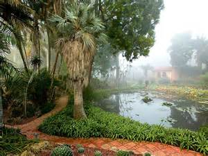 Lotus Land Santa Barbara Landscape Designer Cox Shares The World S Most