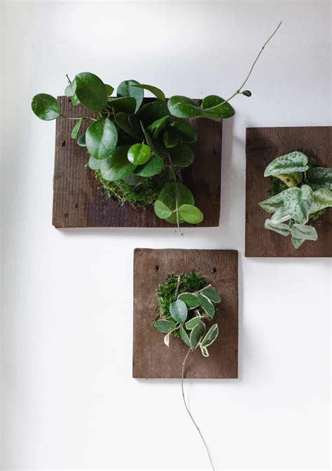 Home Bathroom Ideas diy wall mounted plants aka living art a beautiful mess