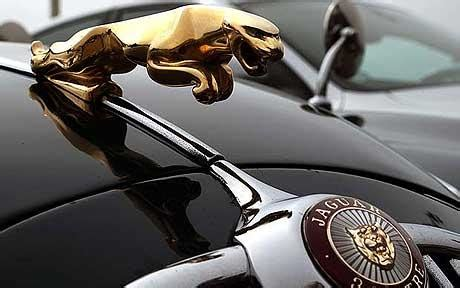logo jaguar car jaguar logo world of cars