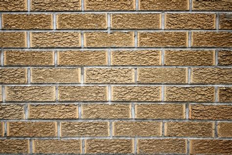 on wall brick wall texture picture free photograph photos domain
