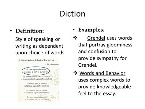 Diction Essay by Sol Reading Literary Terms Review Ppt