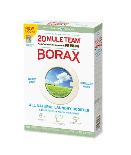 borax bed bugs musely