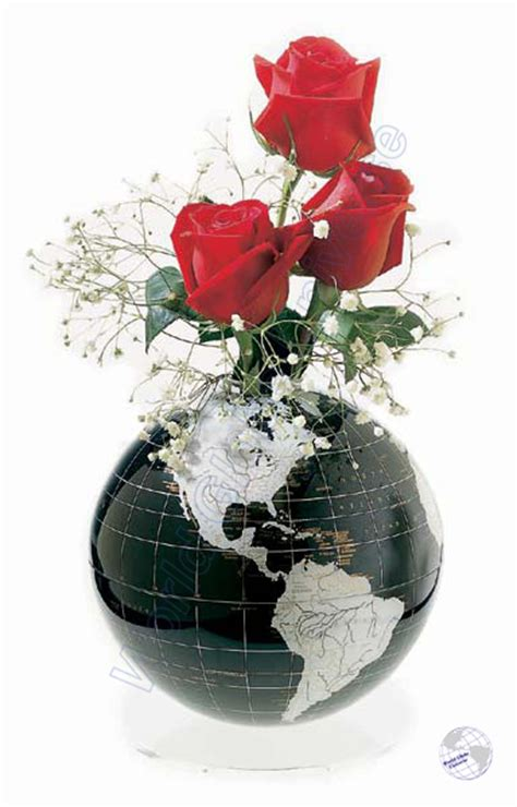 Flower Globe Vase by Onyx Flowersphere 16 Quot Earth Globe Vase