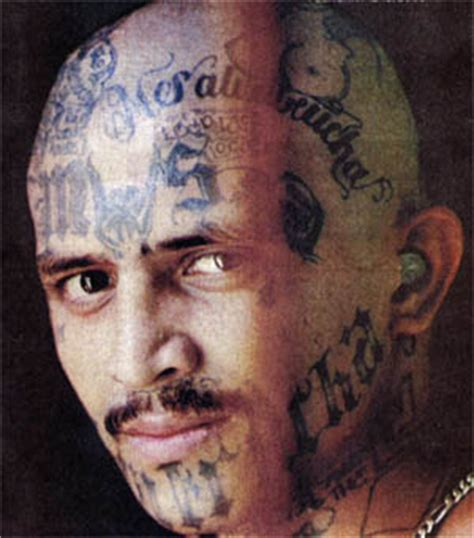 latino prison gangs ms 13 mara salvatrucha 13