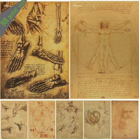 leonardo da vinci manuscript vitruvian man posters
