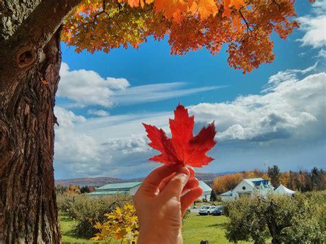 Records Search Canada Immigrer Au Canada S Expatrier Travailler Et 233 Tudier Au Qu 233 Bec Canada
