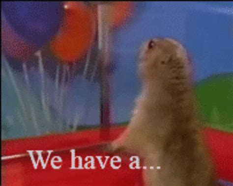 Dramatic Squirrel Meme - image 14715 dramatic chipmunk know your meme
