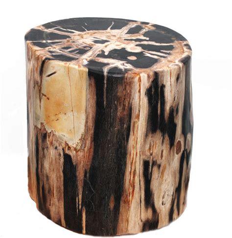 Petrified Wood Stools by Large And Impressive Petrified Wood Side Table Stool At 1stdibs