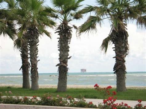 porto sant elpidio comune spiaggia di marina faleriense trovaspiagge it portale