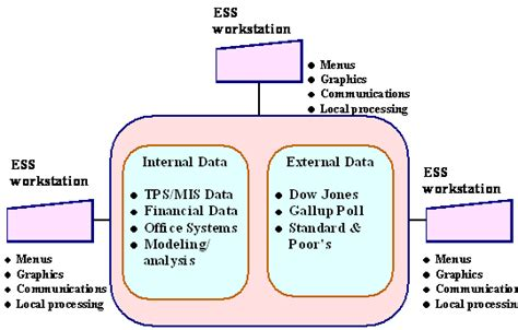 management information system atlantic international