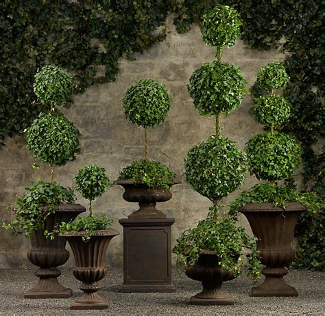 live english ivy topiaries the art of topiary practiced