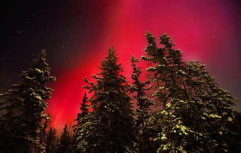 Home Decor Lights Online Red Aurora Borealis Pelly Crossing Photograph By Robert