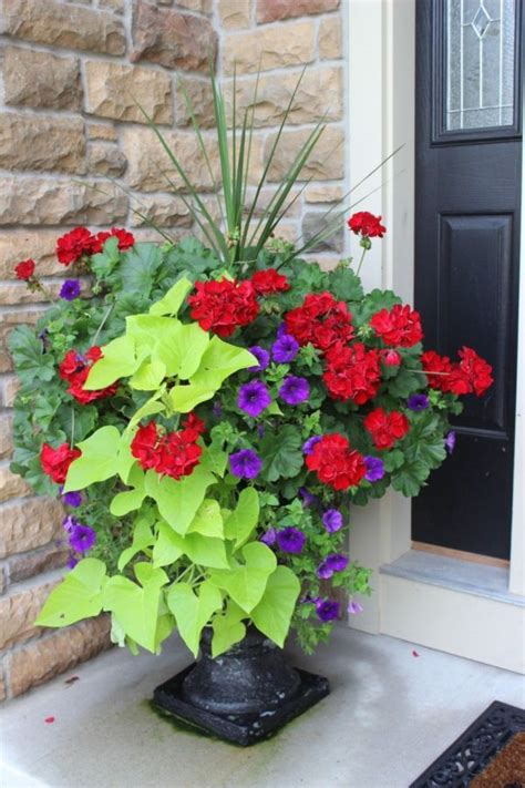 cheap outdoor planters planters awesome outdoor flower planters outdoor flower