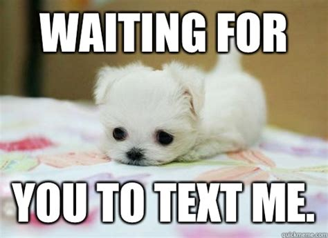 Waiting For Text Meme - waiting for a like text back memes