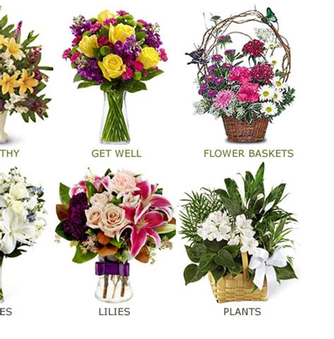 flowers and plants for sale gifts, roses, fresh flowers