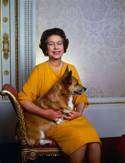 corgis queen elizabeth corgi the royal corgis pinterest