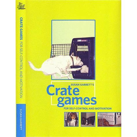 pattern games dvd leslie mcdevitt crate games for motivation and control dvd