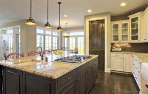 kitchen ideas black cabinets white wood floors in kitchen kitchen cabinets white