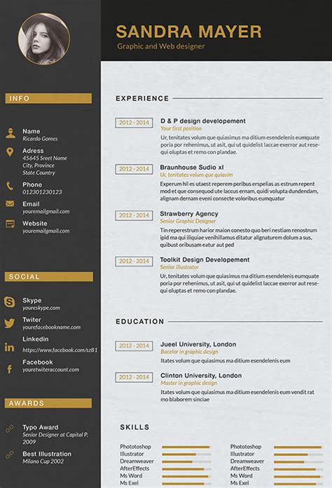 Graphic Designer Resume by Designer Resume Template 9 Free Sles Exles