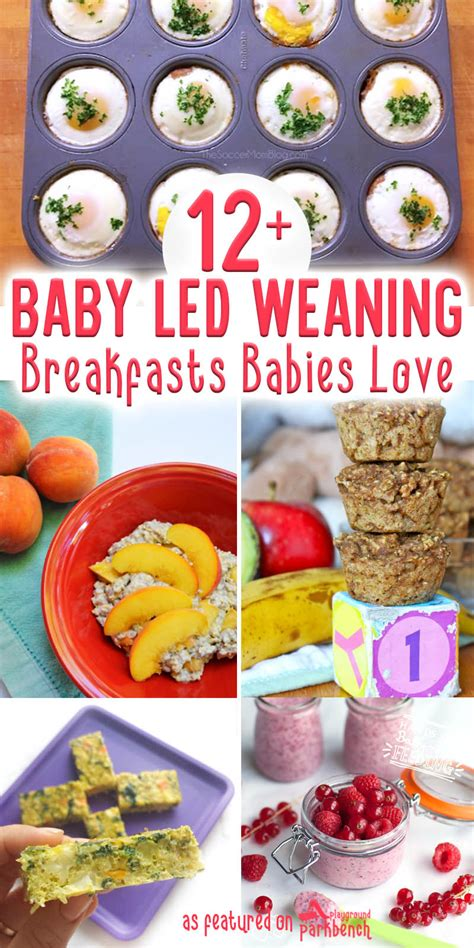 Real Food For Babies And Toddlers Baby Led Weaning And Beyond Ebook 12 baby led weaning breakfasts your baby will