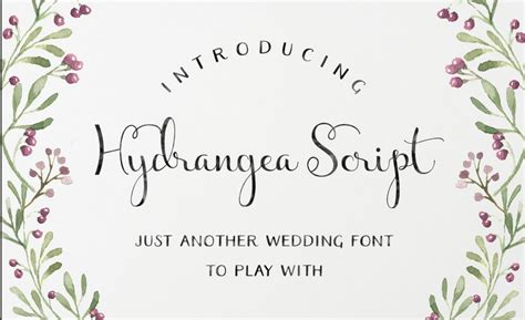 Wedding Font Brush by 100 Beautiful Script Brush Calligraphy Fonts Design