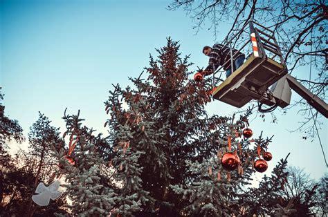 wann wurde der erste gedreht wann wurde der erste weihnachtsbaum aufgestellt my