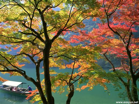 wallpaper free japan download free japanese nature wallpapers most beautiful