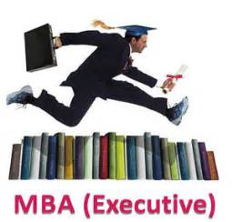 Executive Mba Placements by Pimsr Program Overview E Mba