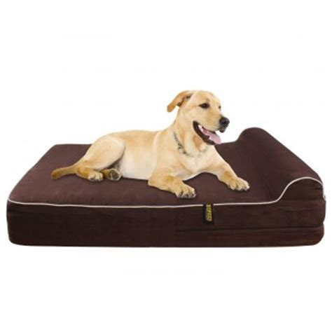 best dog beds review kopek orthopedic memory foam dog bed review best dog