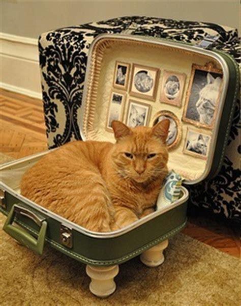 camas para gatos caseras camas para gatos caseras accesorios para gatos wikigato