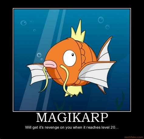 Magikarp Meme - magikarp meme magikarp is awesome pinterest meme and