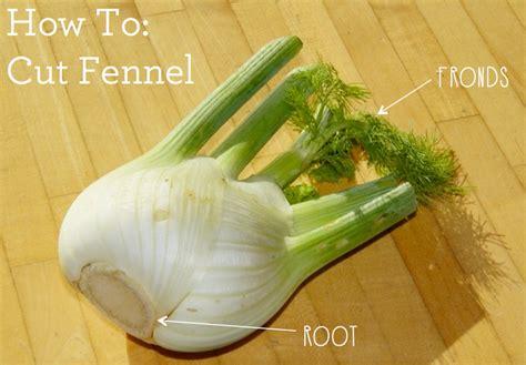 how to cut fennel garnish gather blog