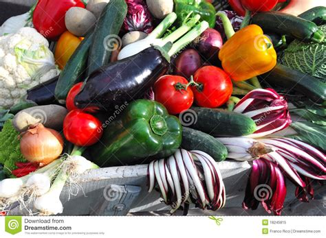 vegetables used in italian cooking fresh italian vegetables royalty free stock photo image