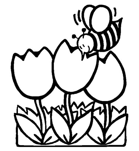 printable spring flowers coloring sheets 2014 spring coloring pages of flowers printables for kids