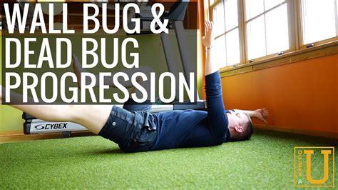 wall bug dead bug progression kinetic  exercise