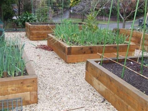Vegetable Garden Design Australia Raised Garden Beds Australian Vegetable Gardening