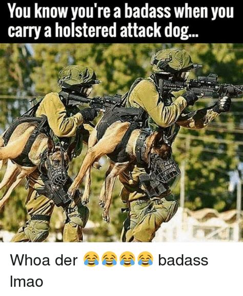 You Re A Badass Meme - 25 best memes about holstered attack dog holstered