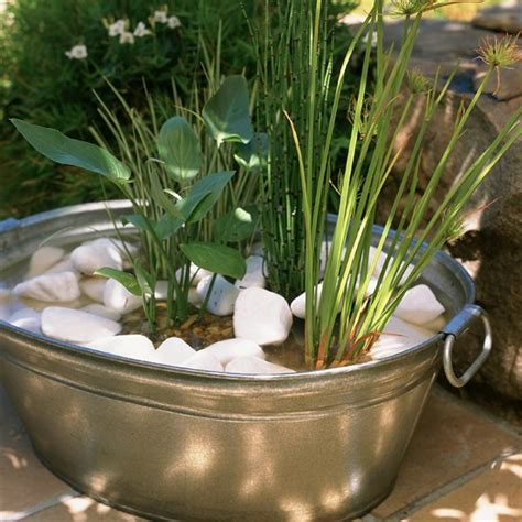 Plant Containers Plant Up A Container How To Makeover Your Front Garden
