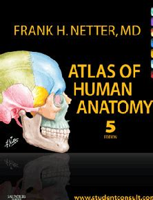 anatomy book with cadaver pictures cadaver pictures med student books