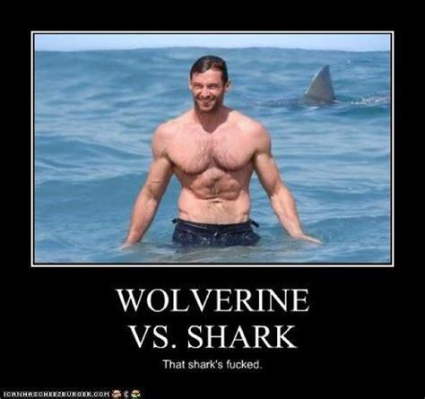 Fun Memes - wolverine memes