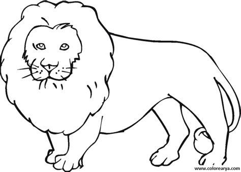 imagenes de leones para pintar dibujos de leones salvajes para imprimir y pintar
