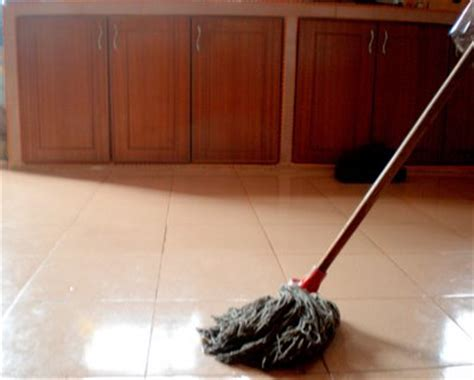 Hawaii Sapu Air P Mop suhadradzal jom mop lantai