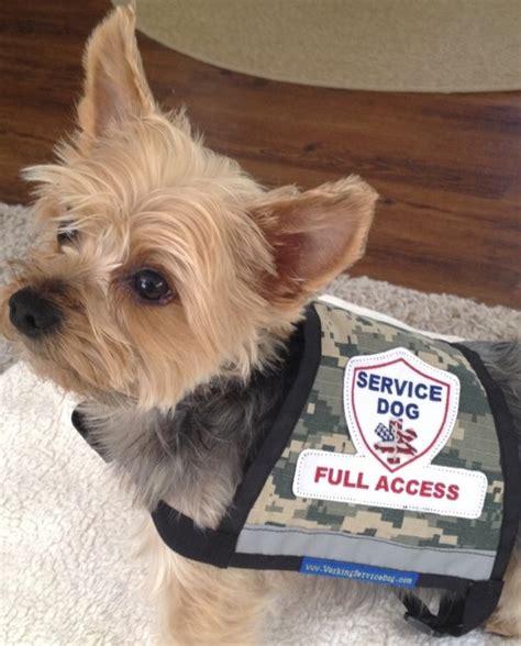 small service dogs premium xx small and x small camo service vest