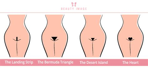 What Does A Bermuda Triangle Pubic Cut Look Like | the ultimate guide to bikini wax styles
