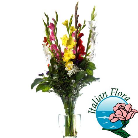 gladioli fiori bouquet di gladioli colorati