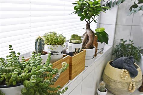 kleines badezimmerfenster plissee badezimmerfenster gt jevelry gt gt inspiration f 252 r