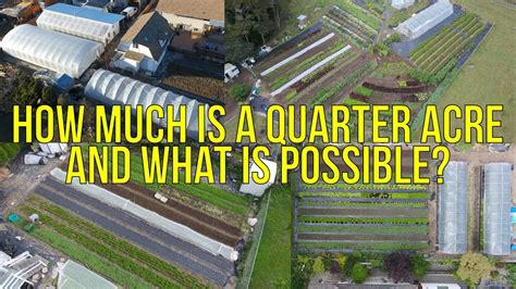 how is a how much is a quarter acre and what is possible