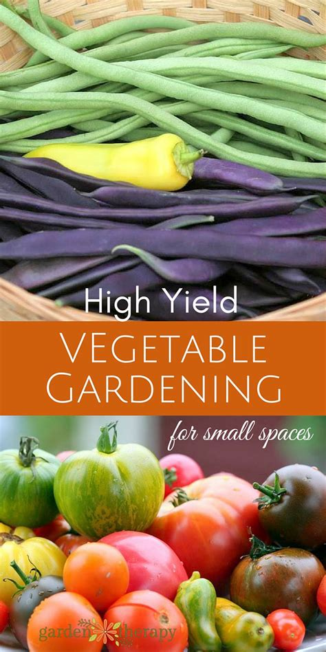 The Secrets To High Yield Vegetable Gardening In Small High Yield Vegetable Garden